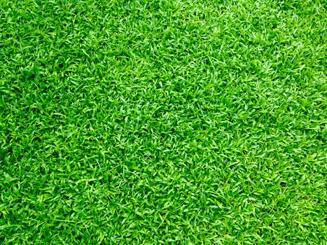 artificial grass Adelaide product